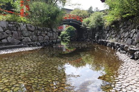 下鴨神社の写真素材 [FYI03159724]