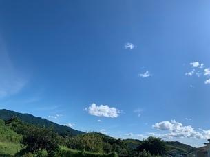 快晴の青空の写真素材 [FYI03159727]
