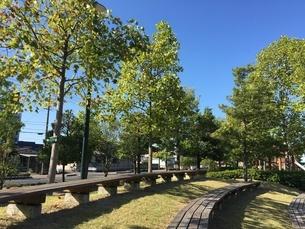 公園の写真素材 [FYI03159939]