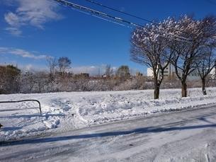 雪景色の写真素材 [FYI03160146]