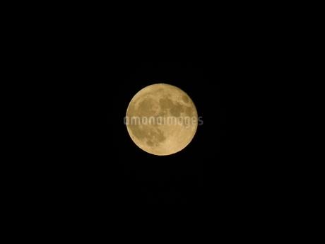 月の写真素材 [FYI03160221]