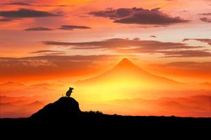 富士山の日の出とネズミのシルエットのイラスト素材 [FYI03160323]