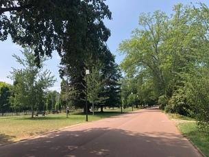 公園の写真素材 [FYI03160660]