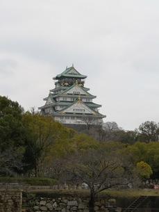 雄大に聳え立つ大阪城の写真素材 [FYI03160821]