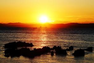 観音崎の日の出の写真素材 [FYI03160832]