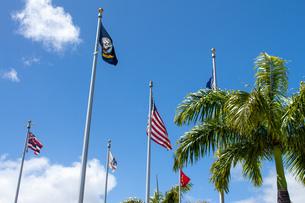 ハワイの青空の写真素材 [FYI03160845]