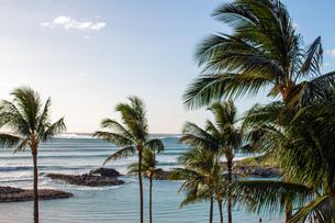 ハワイの水平線の写真素材 [FYI03160861]