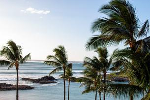 ハワイの水平線の写真素材 [FYI03160862]