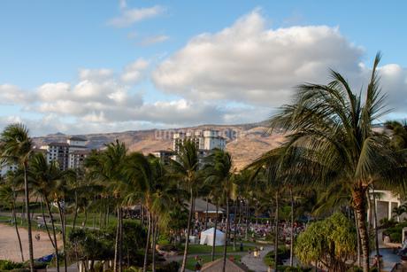 ハワイの青空の写真素材 [FYI03160864]