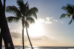 ハワイの夕焼けの写真素材 [FYI03160867]