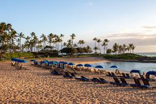ハワイの夕焼けの写真素材 [FYI03160877]