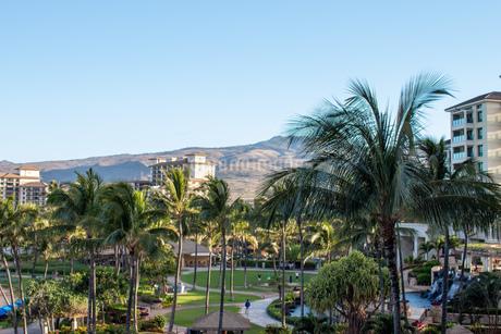 ハワイの青空の写真素材 [FYI03160881]