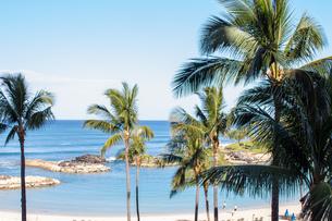 ハワイの水平線の写真素材 [FYI03160883]