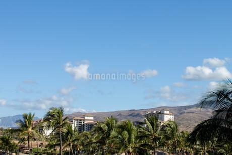 ハワイの青空の写真素材 [FYI03160887]