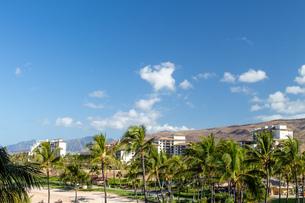 ハワイの青空の写真素材 [FYI03160888]