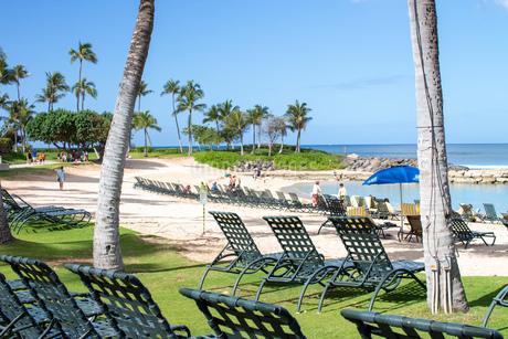ハワイの海岸の写真素材 [FYI03160907]