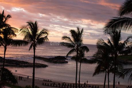 ハワイの夕焼けの写真素材 [FYI03160935]