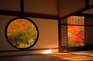 11月 鷹ヶ峯の源光庵 -京都の紅葉-の写真素材 [FYI03161114]