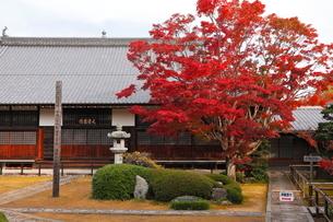 11月 鷹ヶ峯の源光庵 -京都の紅葉-の写真素材 [FYI03161123]