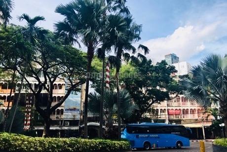 木と車と建物と空の写真素材 [FYI03161184]