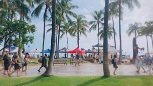 ワイキキビーチの写真素材 [FYI03161294]