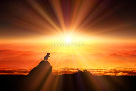 日の出とネズミのシルエットのイラスト素材 [FYI03161367]