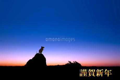 夜明けとネズミのシルエットのイラスト素材 [FYI03161374]