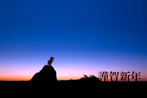 夜明けとネズミのシルエットのイラスト素材 [FYI03161375]