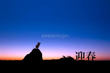 夜明けとネズミのシルエットのイラスト素材 [FYI03161376]