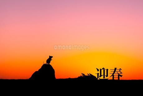 日の出とネズミのシルエットのイラスト素材 [FYI03161379]