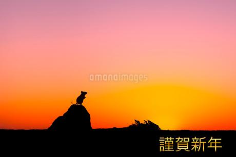 日の出とネズミのシルエットのイラスト素材 [FYI03161382]