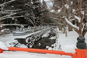 冬の高野山奥之院の写真素材 [FYI03161824]