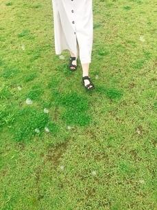シャボン玉と芝生の写真素材 [FYI03161904]