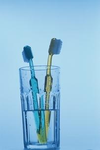 コップに立てかけられたペアの歯ブラシの写真素材 [FYI03162041]