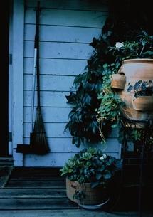 ガーデニング テラスの植木の写真素材 [FYI03162142]