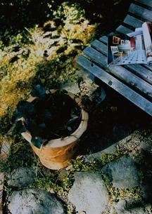 ガーデニング ベンチと植木の写真素材 [FYI03162143]