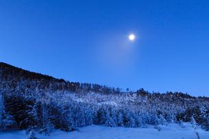 雪景色 北八ヶ岳山頂の月光の写真素材 [FYI03162251]