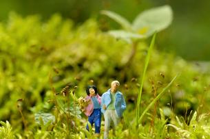 ミニチュアグリーンワールド「お散歩」の写真素材 [FYI03162263]