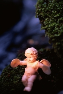 植物の上に座る天使の人形1体の写真素材 [FYI03162296]
