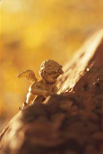 木の幹に置かれた天使の人形1体の写真素材 [FYI03162321]