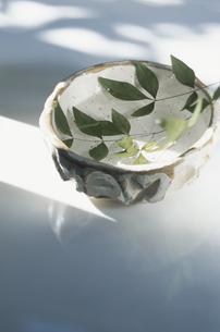 椀の中に浮かぶ葉の写真素材 [FYI03162335]