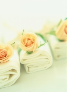 結婚式のテーブルナプキンとバラの写真素材 [FYI03162581]