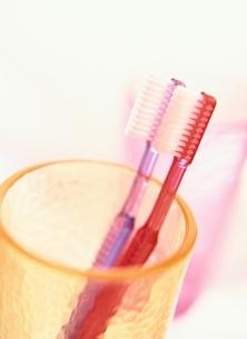2本の歯ブラシとコップの写真素材 [FYI03162592]