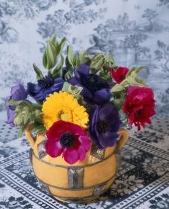 花瓶のガーベラとアネモネ(紫・黄色)の写真素材 [FYI03162663]