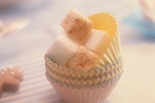角砂糖の写真素材 [FYI03162718]