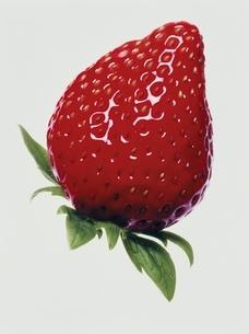 イチゴの写真素材 [FYI03162920]