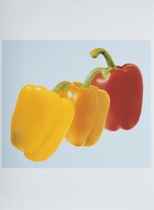 3個のパプリカ(赤・黄色・オレンジ色)の写真素材 [FYI03163100]