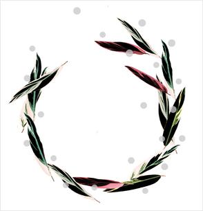葉のフレームの写真素材 [FYI03163258]