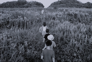 草原を一列になって歩く日本人の子供たち B/Wの写真素材 [FYI03163331]