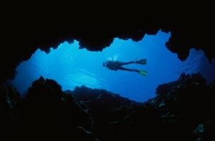 海底のダイバー  慶良間諸島 沖縄の写真素材 [FYI03163351]